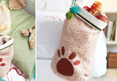 For Pet Lovers Only: Spoiling Spot and Sally